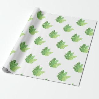 Fougères vertes papier cadeau