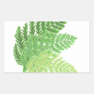 Fougères vertes sticker rectangulaire