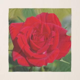 Foulard Rose rouge