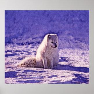Fox arctique poster