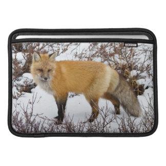 Fox rouge dans la neige en hiver poches macbook