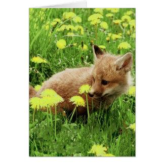 Fox rouge de bébé dans le domaine vert avec les carte de vœux