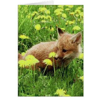 Fox rouge de bébé dans le domaine vert avec les carte de correspondance