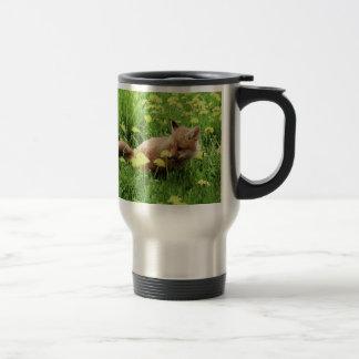 Fox rouge de bébé dans le domaine vert avec les mug de voyage en acier inoxydable