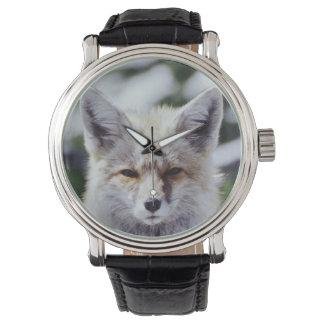 Fox rouge se reposant sur la banque de neige, montres bracelet