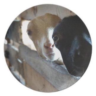 Foyer de chèvre assiettes en mélamine