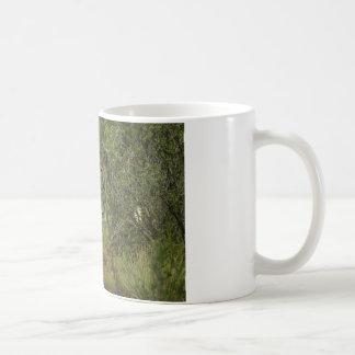 Framboise de cerfs communs de mule mug