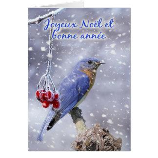 Français - carte de voeux bleue de Noël d'oiseau