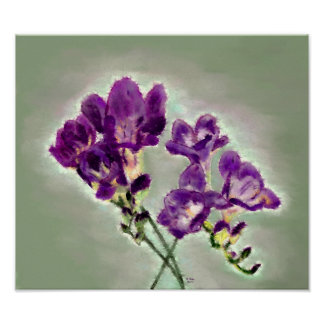 Freesia violet poster