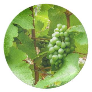 french wine assiettes en mélamine