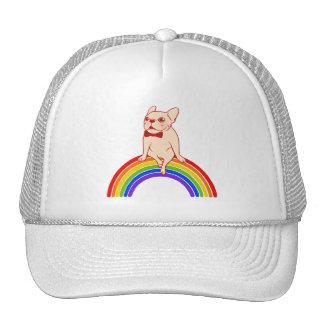 Frenchie célèbre le mois de fierté sur casquette