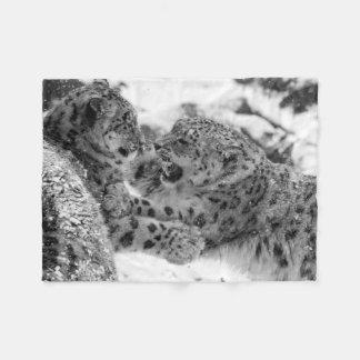 Frères de Jeu-Combat de léopard de neige