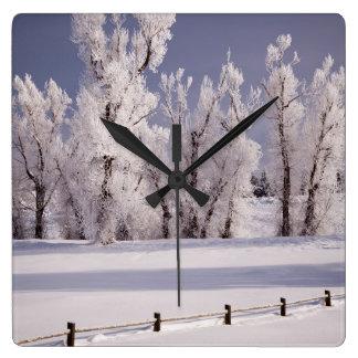 Frost a couvert les arbres et la barrière, le Colo Horloges