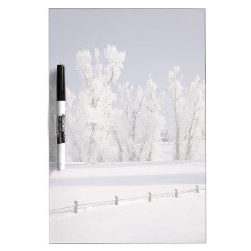 Frost a couvert les arbres et la barrière, le Colo Tableaux Effaçables Blancs