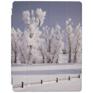 Frost a couvert les arbres et la barrière, le protection iPad