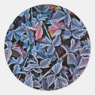Frost sur le feuille d'automne, Orégon Sticker Rond