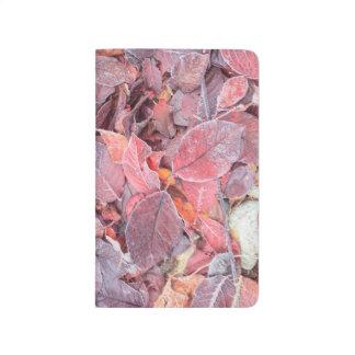 Frost sur le feuille tombé, couleurs d'automne, carnet de poche