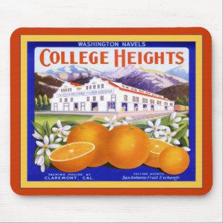 Fruit de cru de ~ d'oranges de marque de tailles d tapis de souris