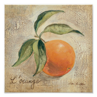 Fruit orange brillant rond affiches