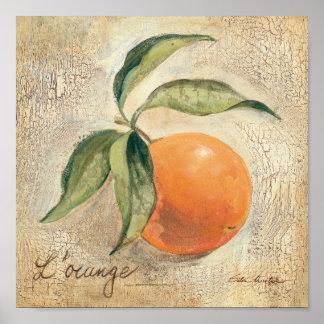 Fruit orange brillant rond posters