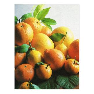 Fruits et légumes, oranges et citrons carte postale