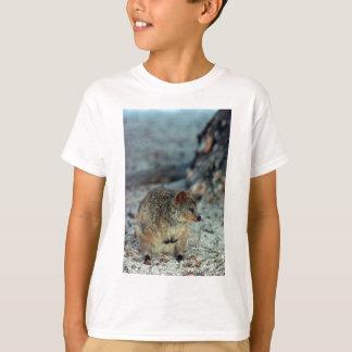 Fureur mignonne Quokka sur l'île de Rottnest T-shirt