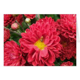 Gaffez la carte vierge d'abeille et de fleur rose