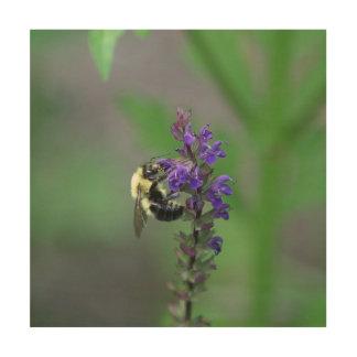 Gaffez l'abeille, copie en bois de photo impression sur bois