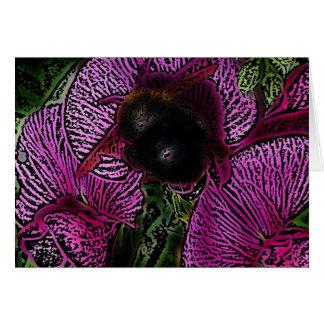 Gaffez l'abeille et les pois doux cartes