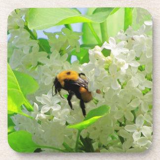 Gaffez l'abeille sur les lilas blancs sous-bock