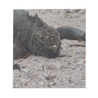 Galapagos1 Blocs Notes