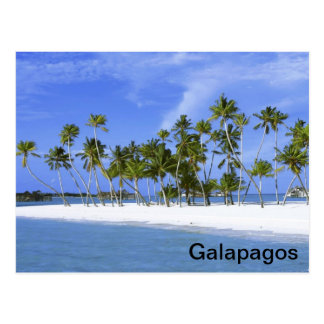 Galapagos - plage cartes postales