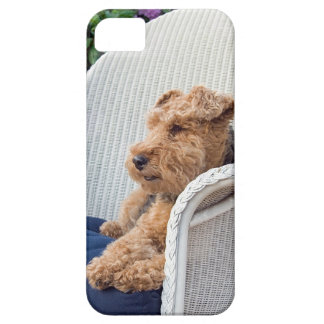 Gallois Terrier Coque Barely There iPhone 5