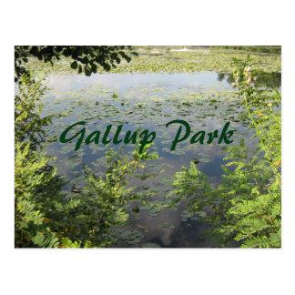 Gallup se garent à Ann Arbor Cartes Postales