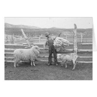 Garçon supportant un paquet de laine carte de vœux