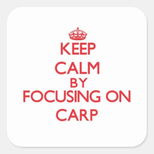 Gardez le calme en se concentrant sur la carpe adhésif