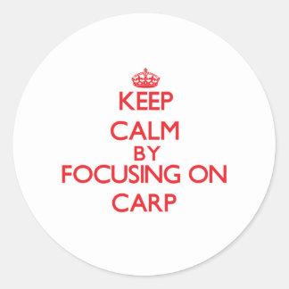 Gardez le calme en se concentrant sur la carpe adhésifs ronds