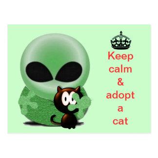Gardez le calme et adoptez un chat carte postale