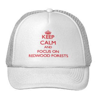 Gardez le calme et le foyer sur des forêts de casquettes de camionneur
