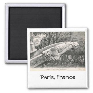 Gargouille, Notre Dame, cru de Paris, France Magnet Carré