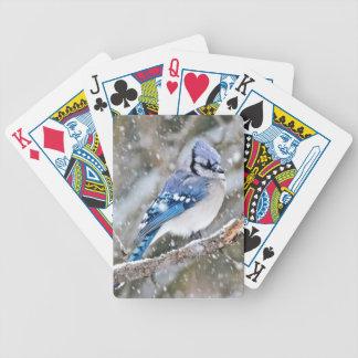Geai bleu dans une tempête de neige jeu de cartes