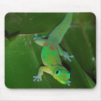 Gecko vert en Hawaï Tapis De Souris