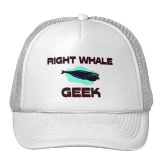 Geek de baleine droite casquette de camionneur