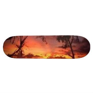 gentil type de vue ! ! ! plateaux de skateboards customisés