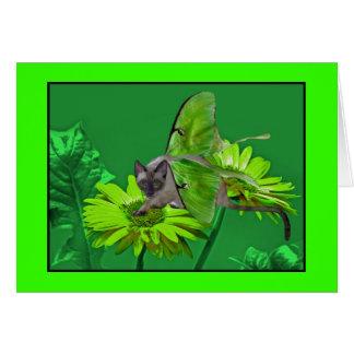 Gerbera vert vibrant de chat de Luna Carte De Vœux