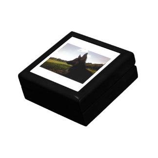 Giftbox de berger allemand petite boîte à bijoux carrée