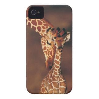 Girafe adulte avec le veau camelopardalis de Gira Coques Case-Mate iPhone 4