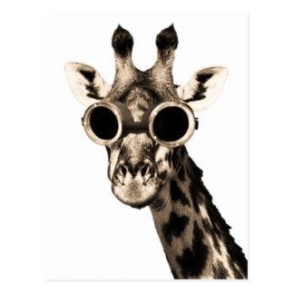 Girafe avec des lunettes de lunettes de soleil de carte postale