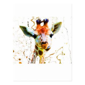 Girafe de bébé cartes postales