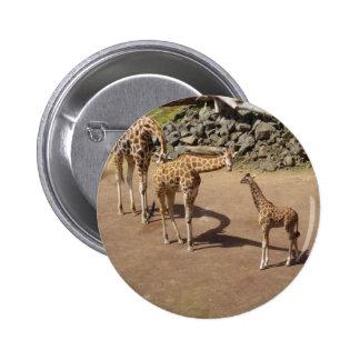 Girafe de bébé et famille de girafe badge rond 5 cm